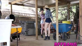 Cowboy gets his cock shared by three sluts and cums on them