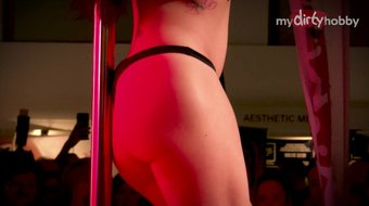 MyDirtyHobby - Busty German brunette Ophelia at DirtyVenus